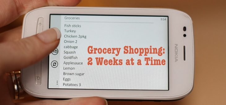 Grocery App Checklist: What Features to be Added?