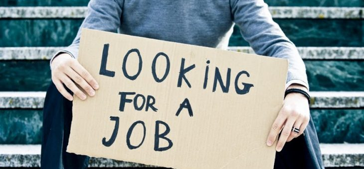 Launch a Job Finding App to Ease Job Search
